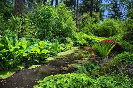 finnerty gardens uvic