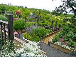 Small Picture Edible Gardens Potagers Mount Hood Gardens Inc