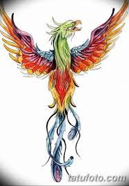 фото тату птица феникс 18072019 002 Phoenix Bird Tattoo