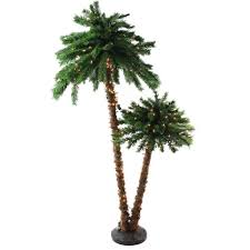 Lighted Christmas Palm Tree Northlight 6 Ft Pre Lit Tropical Palm Tree Artificial Christmas Tree And Clear Lights