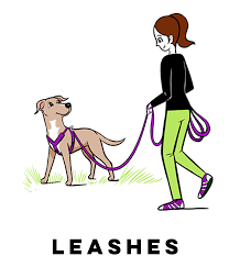 svg freeuse stock campus grisha stewart picture freeuse dog leash clipart