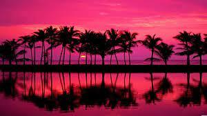 Pink Beach Sunset Hd Hintergrundbilders ...