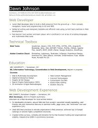 Asp Net Developer Resume New Sample Resume For An Entry Level It
