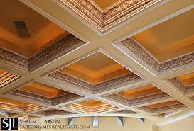 fancy coffered ceiling