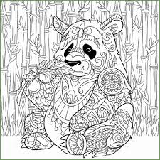 5 Panda Bear Kleurplaten 02089 Kayra Examples
