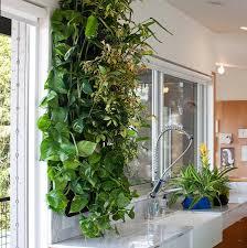 Vertical Herb Garden In Your Kitchen Indoor Kitchen Garden Indoor Kitchen Garden Josaelcom Amazoncom