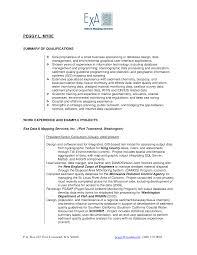 Sas Programmer Resume In Usa Sales Programmer Lewesmr