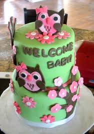Items Similar To Pink Owl Diaper Cake Twin Baby Girls Its A Girl Owl Baby Shower Cakes For A Girl