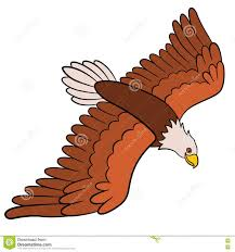 Small Picture Coloring Pages Eagle Pictures For Kids mosatt