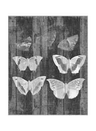 Shop Oraonline Rustic Butterfly Chart Iii Wall Poster Grey