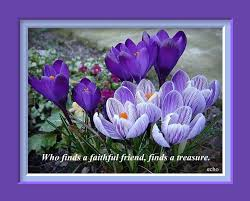 Purple Flower Quotes High Quality Resolution Wallpapers Inspirational Quotes Download