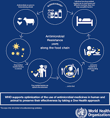 Current Accounts Of Antimicrobial Resistance Stabilisation