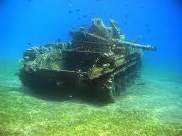 Fish Tank Fish Tank Imgur
