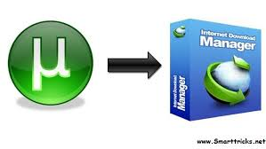 Image result for How to Download Torrents Online Using IDM?