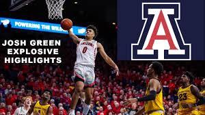 Josh Green - Arizona Highlights 2020 ...