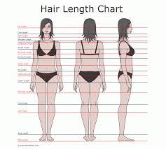 Hair Length Chart Women Hair Length Charts Hip Length Hair Hair Length Chart