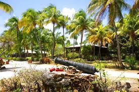 Small Picture Sea Fan Villa Mustique Isle Blue idolza