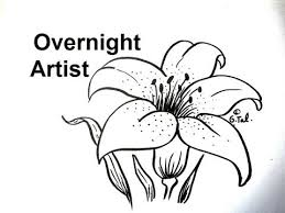 draw a lily flower easy step by step