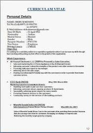 Examples Works Now Example From Areas Participation Resume Hobbies Custom Resume Interests