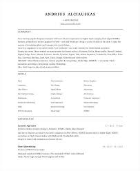 Flash Designer Resume Flash Animator Resume Template Resume Template