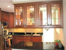 decorative cabinet glass image of kitchen doors double beveled insert inserts for full size