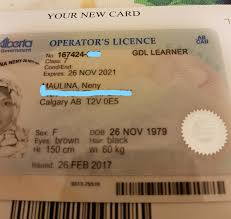 Check spelling or type a new query. Getting Class 7 Driver License Dreamne