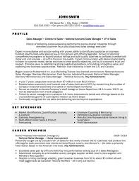 Sales Executive Sample Resume A Resume Template For A National Sales Manager You Can Download It