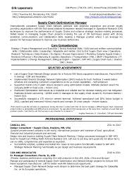 Planning Analyst Sample Resume Professional Business Planning