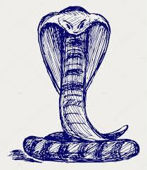 эскиз тату змеи эскиз змея стоковое фото Kreativ 13578941