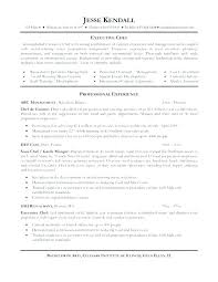 Example Chef Resume Chef Resume Sample Luxury Good Resume Skills ...