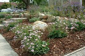 Small Picture Native Landscape Design Ideas erikhanseninfo