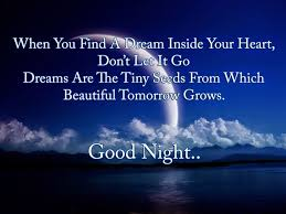 Beautiful Quotes For Good Night Best of Good Night My Love Quote Romantic Good Night My Love Good Night