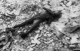 a photo essay on the bombing of hiroshima and nagasaki nag4 jpg 63936 bytes