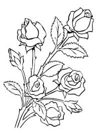 Small Picture Roses Flowers Coloring Pages Coloring Pages Pinterest