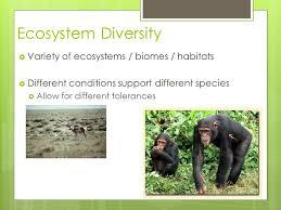 Species Diversity Definition Biodiversity Ch 5 Notes Definition Biodiversity Bio Life