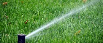 Image result for importance of automatic lawn sprinklers