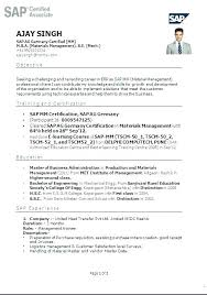 Resume Format Examples Freshers The Best Professional In Sap Basis ...