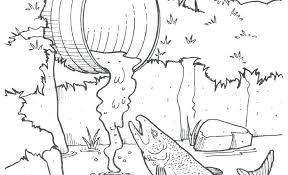 Stop Pollution In Water Pollution Coloring Pages Best Coloring