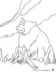 Kodiak Bear Coloring Page More Forest