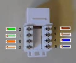 similiar cat 6 jack wiring diagram keywords cat 6 jack wiring diagram
