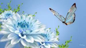 Blue flower wallpaper, Wallpaper nature ...