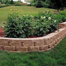 pavestone 2 in x 12 in x 8 in terra