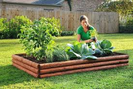 plants for raised garden beds raising planting beds at least 8 to inches improves drainage in plants for raised garden beds