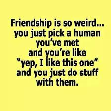 Friendship Funny Pinterest Friendship Friendship Quotes And Beauteous Serious Quotes On Friendship