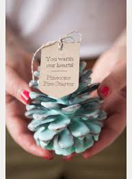 31 brilliantly creative wedding favors you can make for your big Wedding Favors Modern Ideas diy wedding favors diy pine cone fire starter wedding favors do it yourself ideas Do It Yourself Wedding Favors