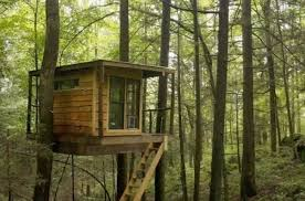 treehouse. Flying Squirrel Treehouse