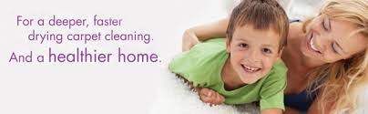 Image result for host carpet cleaning