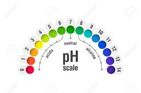 Acid And Base Chart Ph Value Scale Chart For Acid And Alkaline Solutions Acid Base
