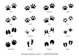 1000 Animal Paw Stock Images Photos Vectors Shutterstock