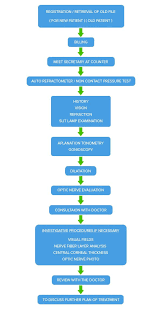 Flowchart For Initial Evaluation Of A Patient With Suspected